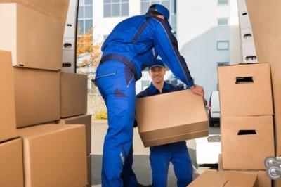 Courtier en Assurance de Marchandises Transportées